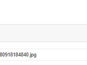 Robots 文件设置不当导致 WordPress 站点 site 出图率低