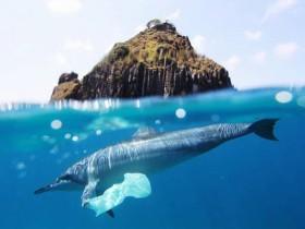央视梳理日本核污染水事件始末 57 天可废掉半个太平洋